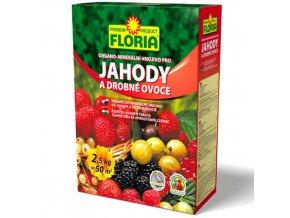 928 008401 FLORIA OM hnojivo pro drobne ovoce 2,5 kg P 8594005002586